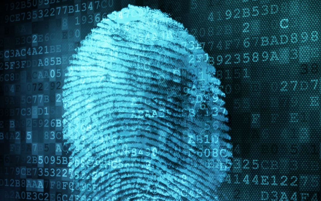 Biometrics, Fintech Buzzword or next Holy Grail?