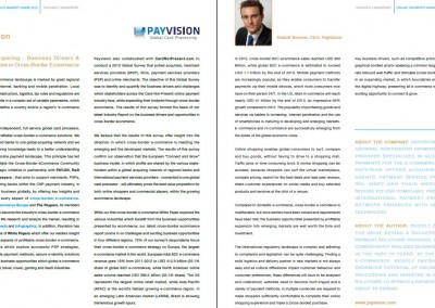 Interview Brand Positioning Payvision in Online Payments Guide